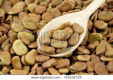 Dried broad beans on a wooden spoon. Can be used as a background.