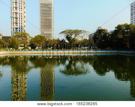 city reflection in the pond, at Elliot Park, Kolkata India