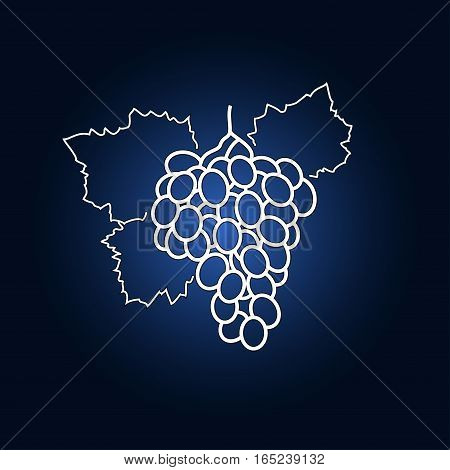 Image Grapes in the Contours on a Dark Blue Background