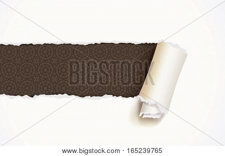 Torn Paper, ready for your message. Top view. Vector illustration. Isolated on white background