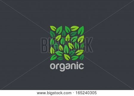 Leaves Eco Logo square shape design vector template. Organic Natural Garden Park Logotype concept icon.