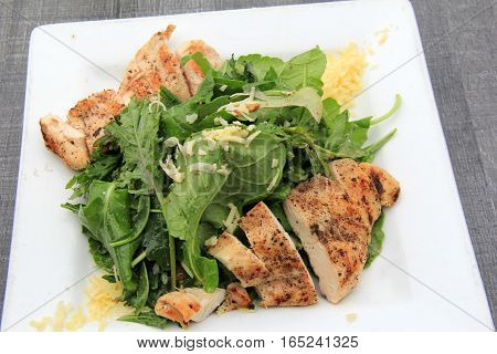 Salad of fresh kale and grilled chicken, set on white plate