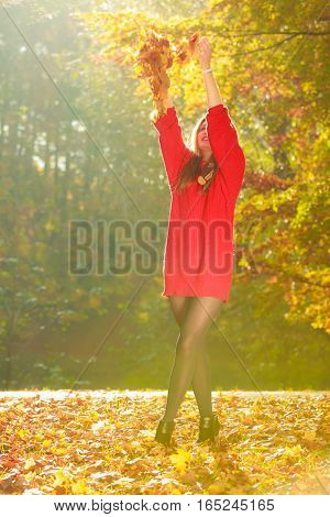 Joy and freedom. Young enjoyable attractive woman having fun with autumnal leaves float in the air in park. Playful girl relaxing outdoor.