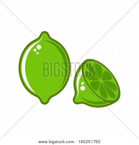 Creative vector lime illustration isolated on white background