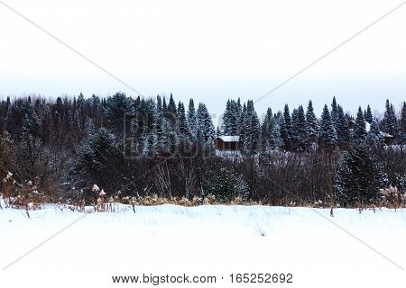 Snow covered woods and buildings in Wisconsin.