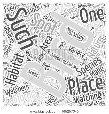 California a Haven for Bird Watching Word Cloud Concept