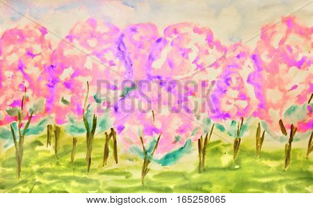 Hand painted picture watercolours pink apple garden in spring in blossom.