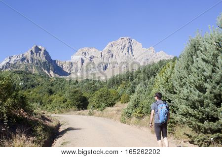 Guy Hiking In The Middle Of The Mountains With Trees Around