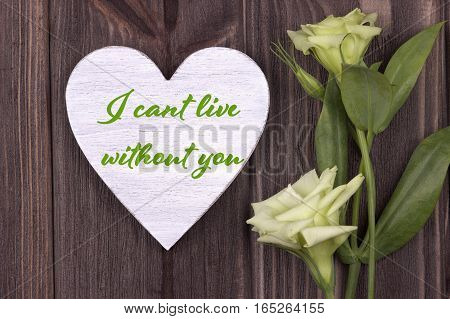 Valentine Card With Text I Cant Live Without You Green