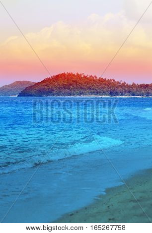Photos landscape exotic coast of the island with palm trees