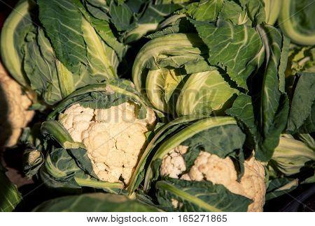 Fresh cauliflower at a market in split croatia