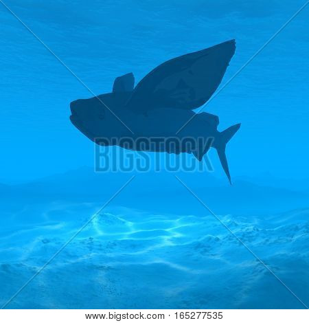 silhouette flying fish underwater with caustic 3d rendering silhouette shark underwater with caustic 3d rendering