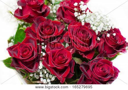 Bunch of natural red roses on a white background