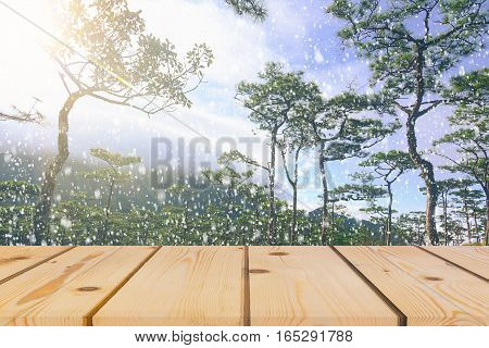 Wooden board empty table in front of blurred background. Perspective brown wood over pine trees forest with snow for mock up display or montage your products vintage.