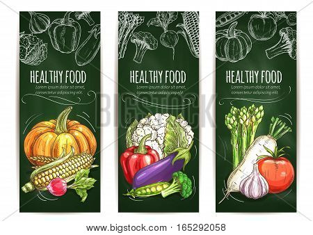 Vegetable sketch banner on blackboard. Healthy food banner set of tomato and pepper, garlic and eggplant, corn, pumpkin, cauliflower and broccoli, pea and radish, asparagus. Organic food shop, farm market design