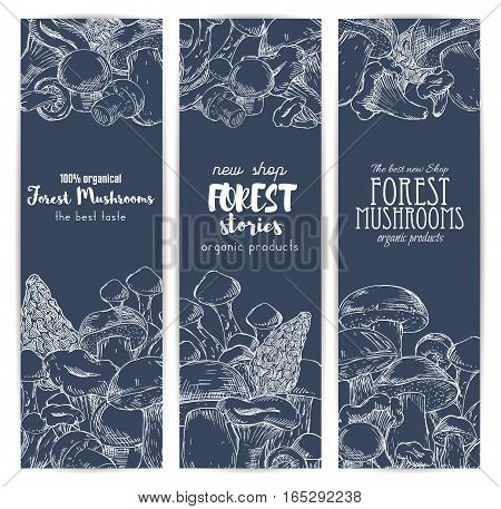 Mushroom shop banners of sketched edible forest mushrooms champignon and chanterelle, russule and milk mushroom or honey agaric, gourmet morel and truffle, woolly milkcap porcini and organic cep. Vertical vector design set