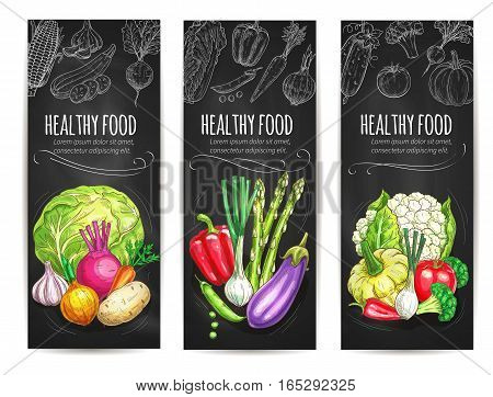 Vegetables sketch banners of vegetarian healthy veggies food cauliflower cabbage, garlic and potato, beet and onion leek, eggplant and asparagus, bell pepper, patisony squash, tomato and broccoli. Vector organic farm harvest on chalkboard