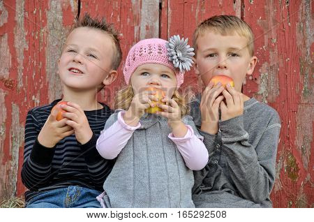 cute Caucasian children eating apples by old red barn