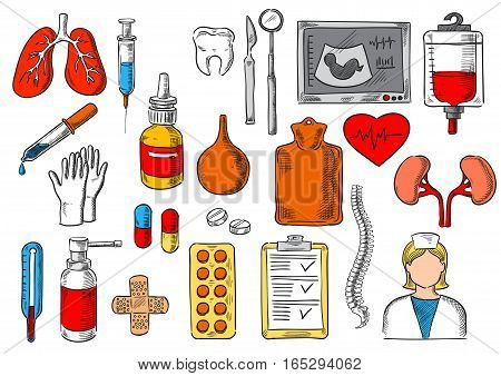Medicines and treatment tools and items. Vector sketch isolated icons of medical pills, human organs lungs, heart and kidney, blood dropper, enema syringe and spray, ultrasound and spine bones, thermometer, dentist nurse mirror, scalpel and tooth