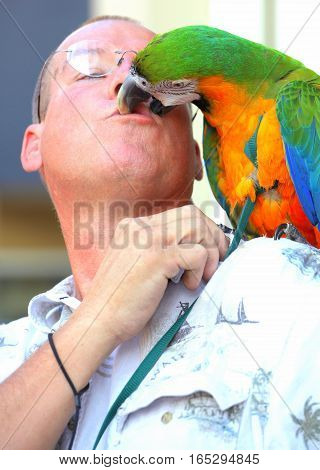 AUGUST 31, 2013. SEATTLE, WA. CIRCA: Male trainer and parrot kissing for tourist outside.