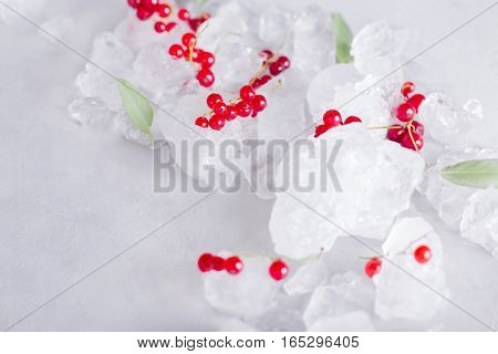 red currants mint and ice on a light gray background. Healthy food photo concept