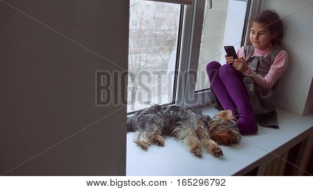 girl teen playing online game for smartphone and pet dog sitting on window web sill windowsill