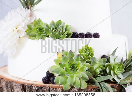 Elegant wedding cake with flowers and succulents. Wedding photo concept