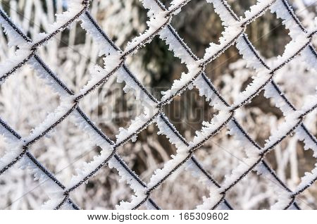 Wire Fence Completely Covered With Frost
