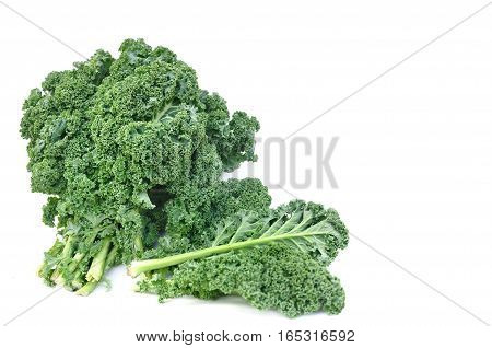 leaves of kale cabbage isolated on white background