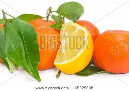 Part of a fresh lemon among several ripe mandarin oranges with twigs and leaves on a light background