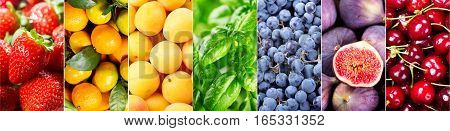 Fresh Fruits And Vegetables, Banner