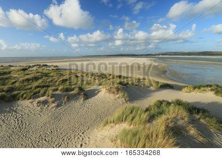 dunes of the Touquet , PAS-DE-Calais, hauts de France , France