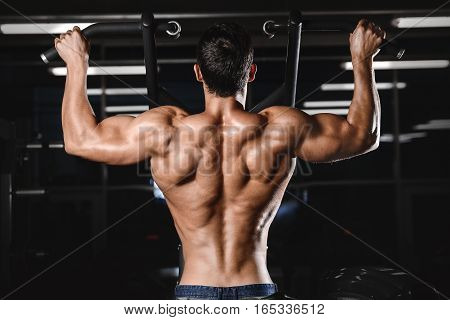 Back Muscle Man's Back.