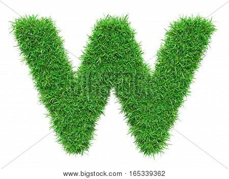 Green Grass Letter W. Isolated On White Background. Font For Your Design. 3D Illustration