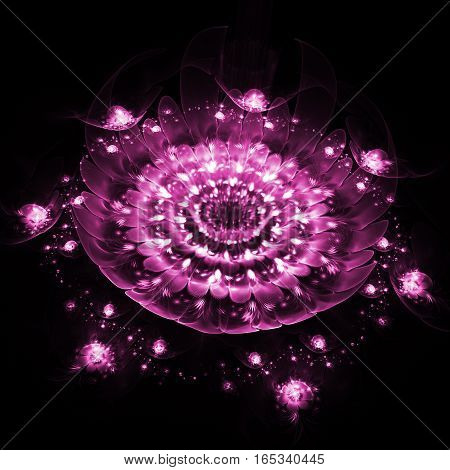 Abstract Rose Flower With Textured Petals On Black Background. Fantasy Fractal Design In Pink Colors