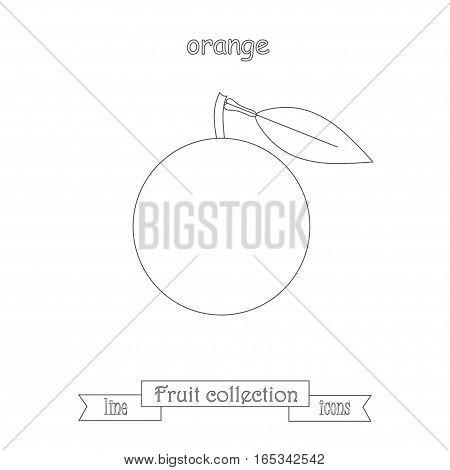 Line orange icon, fruit icon collection stock vector illustration