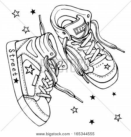 Vector sketch of a pair of sneakers with laces on a white background. Sports shoes drawing isolated.