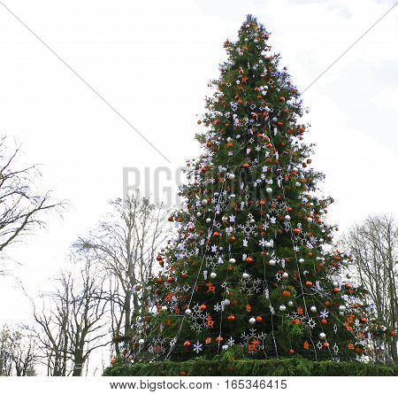 Christmas Festive Tree