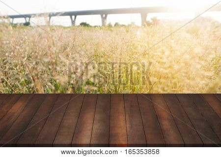 vintage wood shelves on blurry meadow with flower of grass concept of shelves for display products and sale goods.