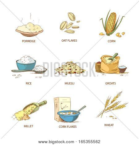 Cartoon ripe ears of cereals, countryside plants vector set. Natural grain heap of cereal, illustration of nutrient cereals