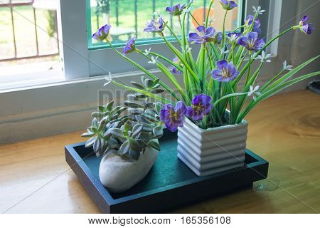 violet flower on vase with glass window.