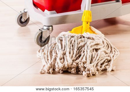 Cleaning Wooden Floor With Mop