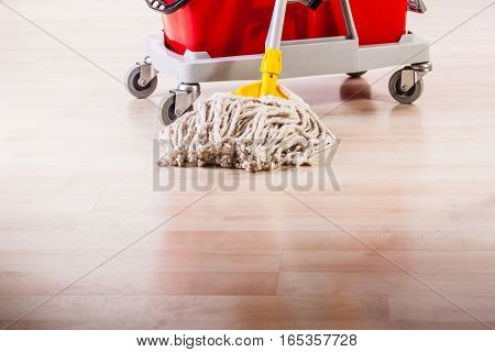 Cleaning The Floor With Mop