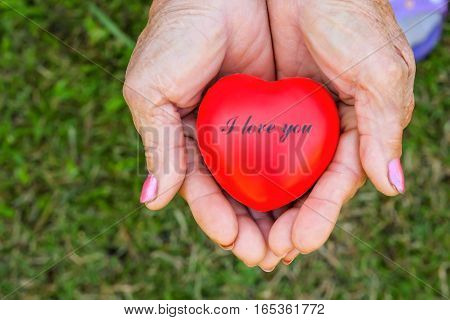 valentines day and love and red heart and romantic love