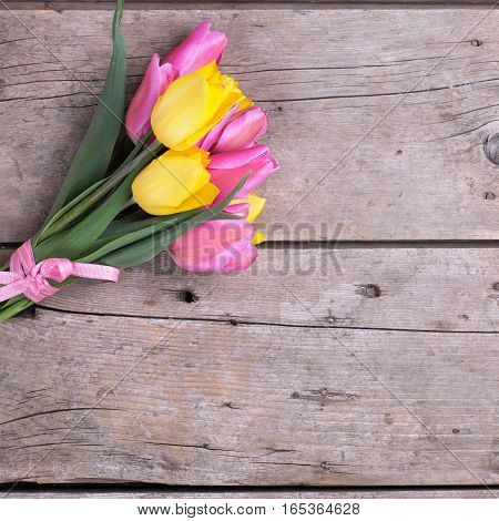 Bunch of bright yellow and pink spring tulips on wooden background. Selective focus. Place for text. Square image.