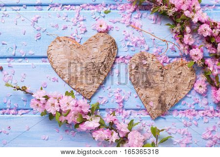 Valentine Day or love background. Two decorative hearts and pink sakura flowers on blue wooden background. Selective focus.
