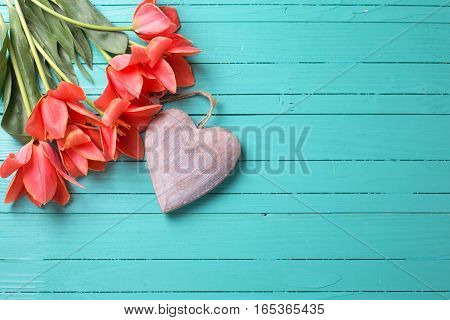Spring tulips and decorative heart on teal painted wooden background. Selective focus. Place for text.