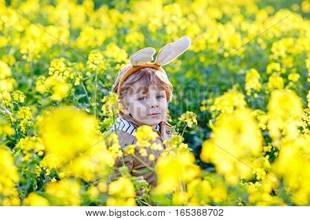 Cute little kid boy with bunny ears having fun with traditional Easter eggs hunt, outdoors. Celebrating Easter holiday. Toddler finding, colorful eggs in yellow flower field.