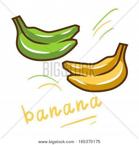 Vector set of cartoon yellow and green bananas.