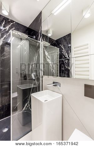 Light Bathroom With Modern Shower Stall